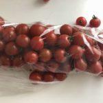 ミニトマト詰め放題