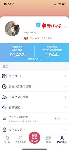 PayPay青バッチ